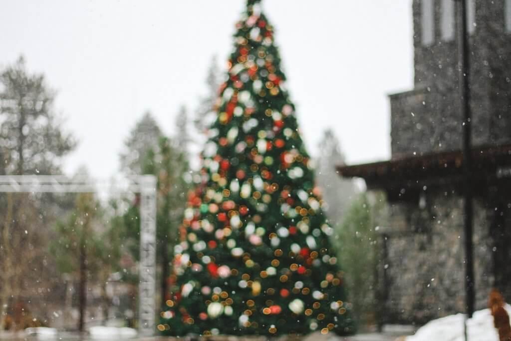 árvores gigantes de natal